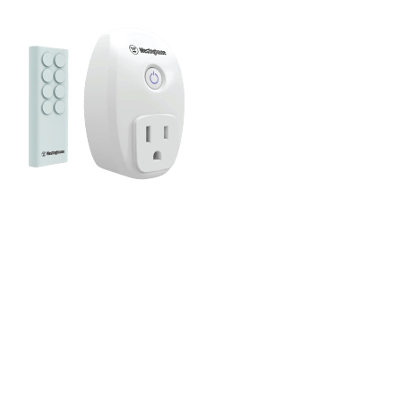 Wireless Remote Systems